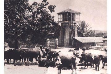 מגדל המים, ראשון לציון